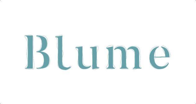 Logo do empreendimento Blume Apartments, Tapajós Construtora